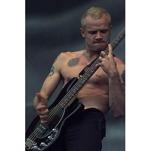 Flea (Red Hot Chili Peppers) - Modulus